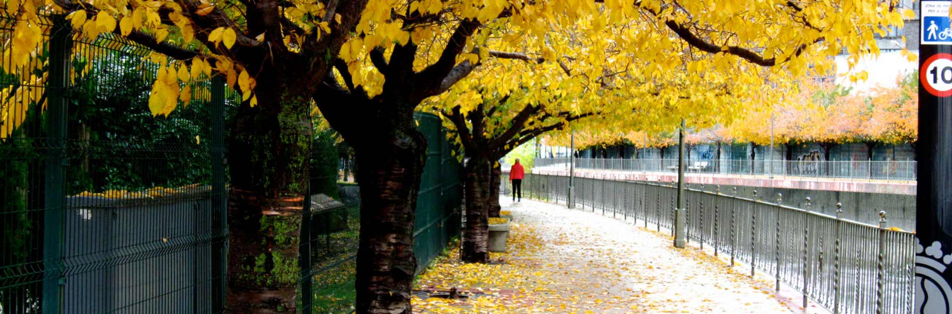 Autumn walking through Andorra la Vella